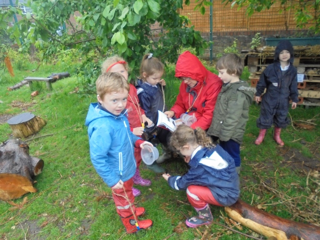 Forest Learning (2)