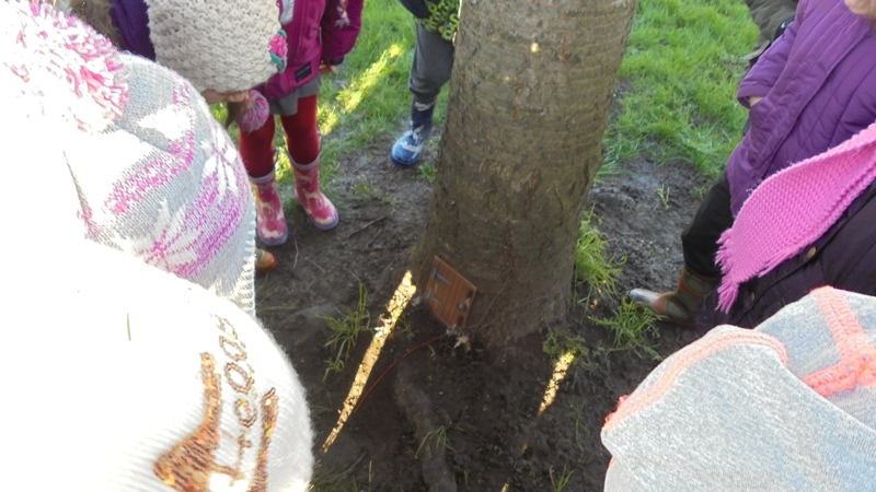 EYFS Forest Schools 11