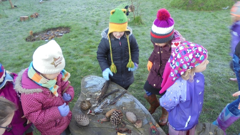 EYFS Forest Schools 12