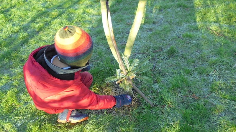 EYFS Forest Schools 13