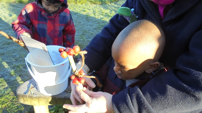 EYFS Forest Schools 9